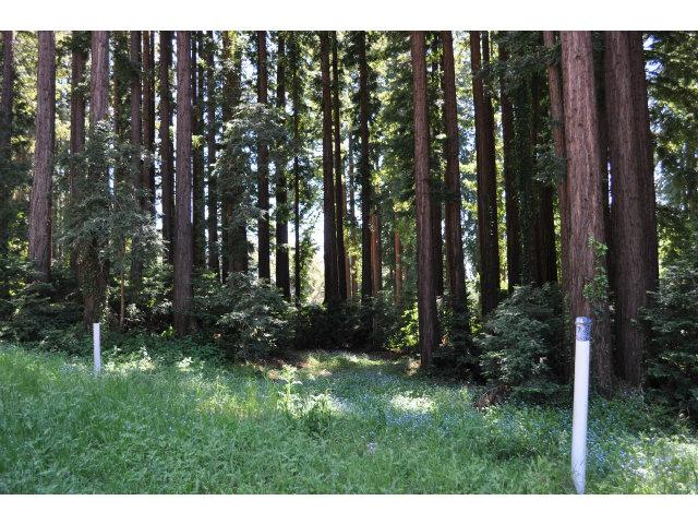 365 Henry Cowell Dr, Scotts Valley, CA 95060
