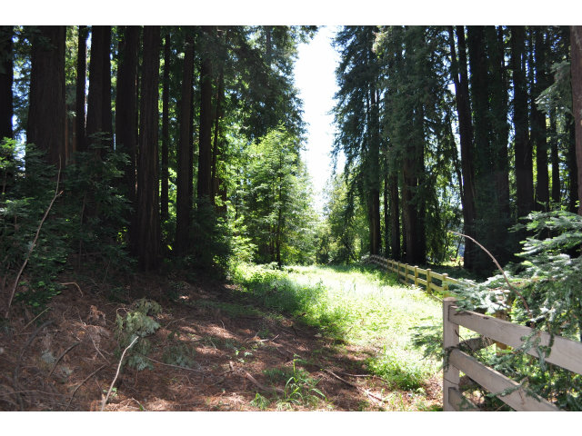 365 Henry Cowell Drive, Scotts Valley, CA 95060