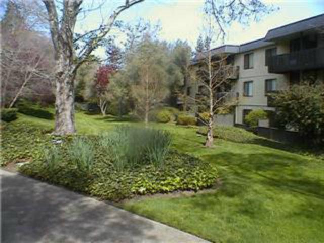 8125 Shelter Creek Ln, San Bruno, CA 94066