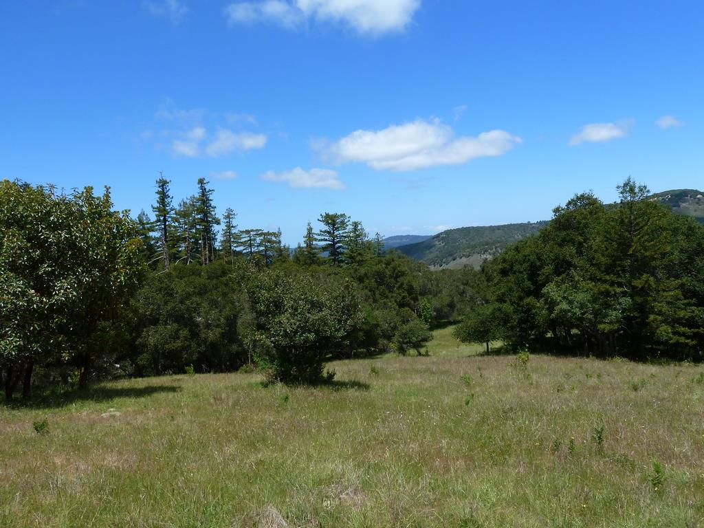30 Potrero Trail, Carmel, CA 93923