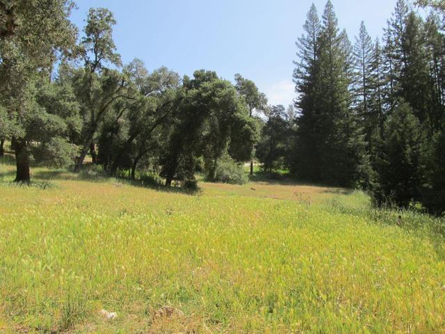 16950 Kings Creek Rd, Boulder Creek, CA 95006