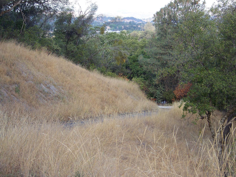 15600 Argyle Road, Sonora, CA 95370