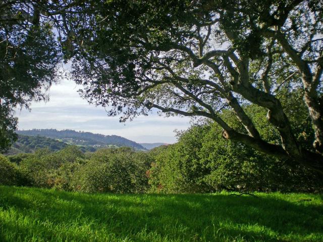 8345 Monterra Vws, Monterey, CA 93940