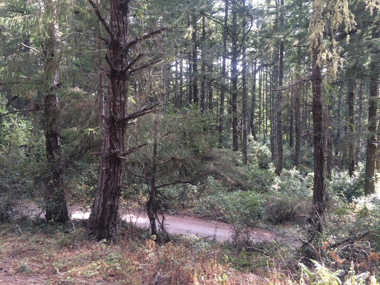 S Ranch Road South Road, Pescadero, CA 94060