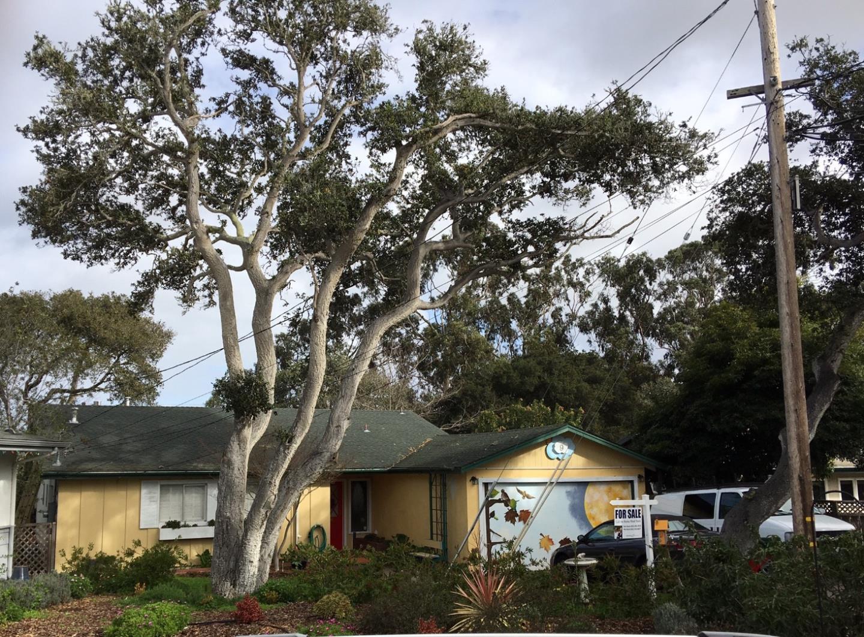 9 Ralston Dr, Monterey, CA