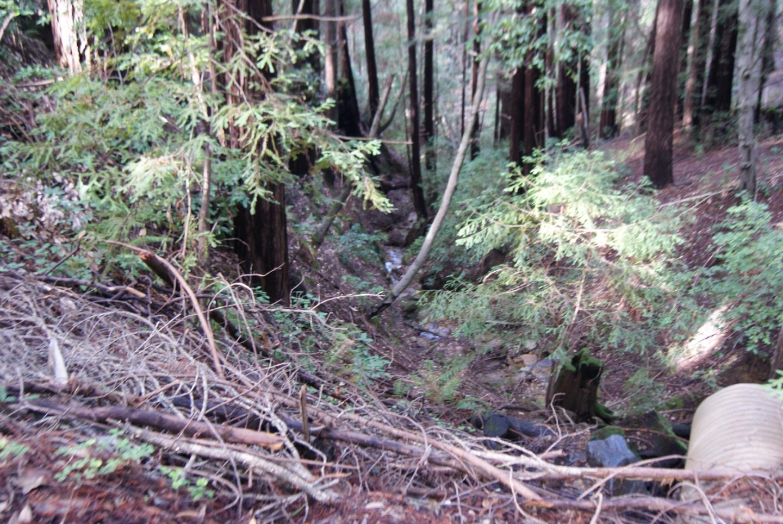 16314 Redwood Lodge Road, Los Gatos, CA 95033