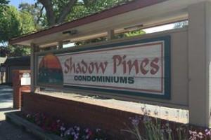 3110 Shadow Springs Pl, San Jose, CA