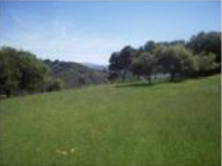 0 0 Country Club Dr, Carmel Valley, CA 93924