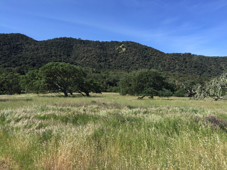 0 Carmel Valley Road, Carmel Valley, CA 93924