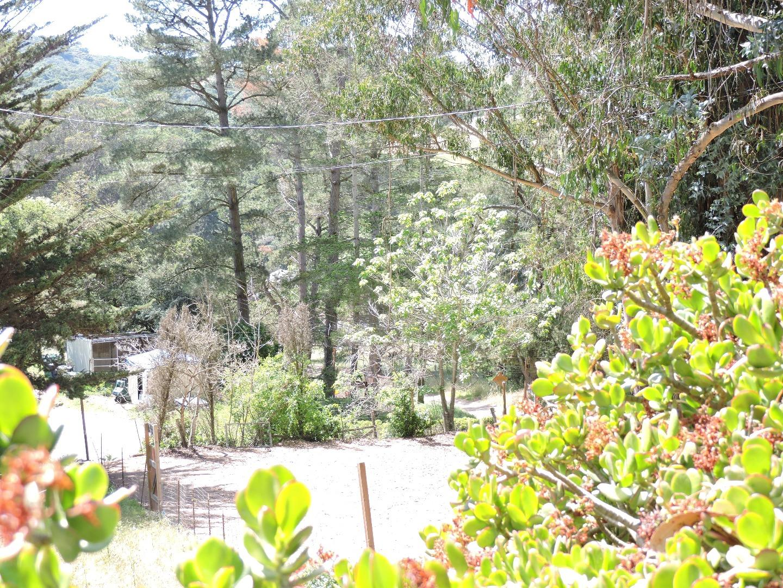 1395 San Miguel Canyon Road #B, Royal Oaks, CA 95076