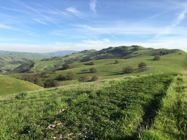 0 Panoche Road Rd, Paicines, CA 95043