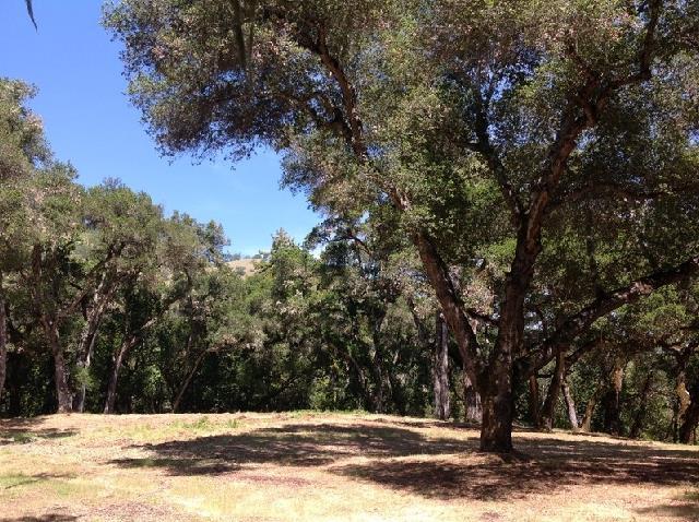 27 San Clemente Trail, Carmel, CA 93923