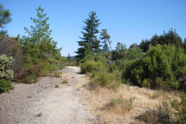 0 Pine Hl, Santa Cruz, CA 95060