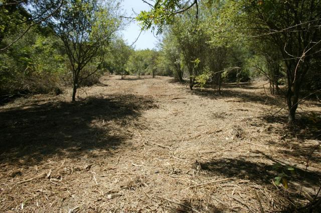 240 Dorrance Rd, Boulder Creek, CA 95006