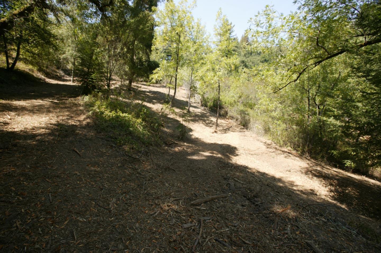 240 Dorrance Road, Boulder Creek, CA 95006