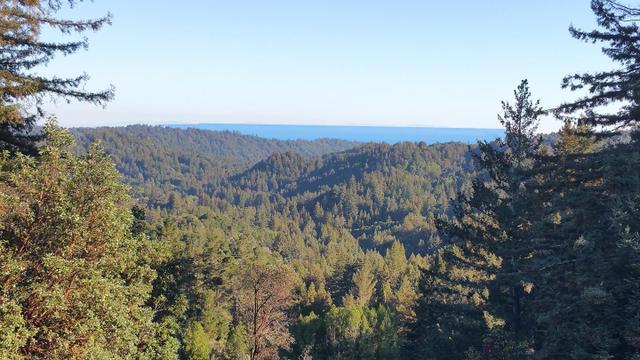 377 Rider Ridge Rd, Santa Cruz, CA 95065