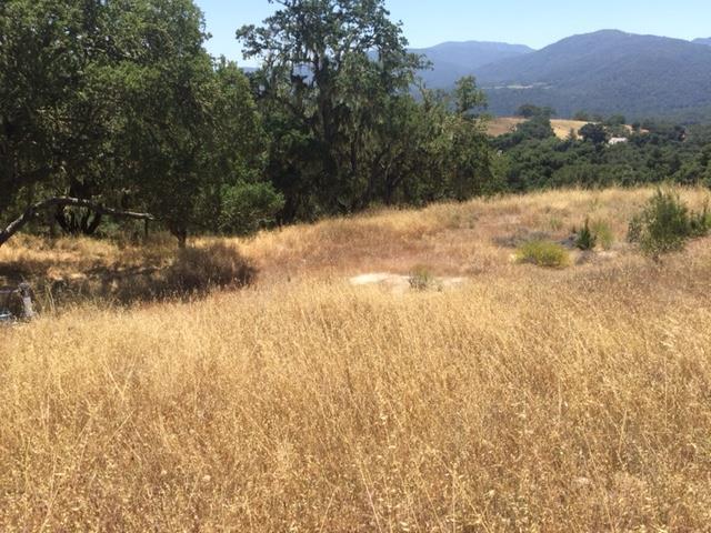 17464 Via Cielo Cachagua Grade, Carmel Valley, CA 93924