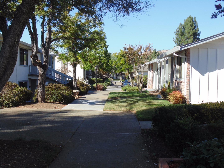 5153 Cribari Place, San Jose, CA 95135