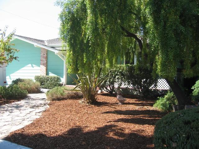 1067 Corvette Dr, San Jose, CA 95129