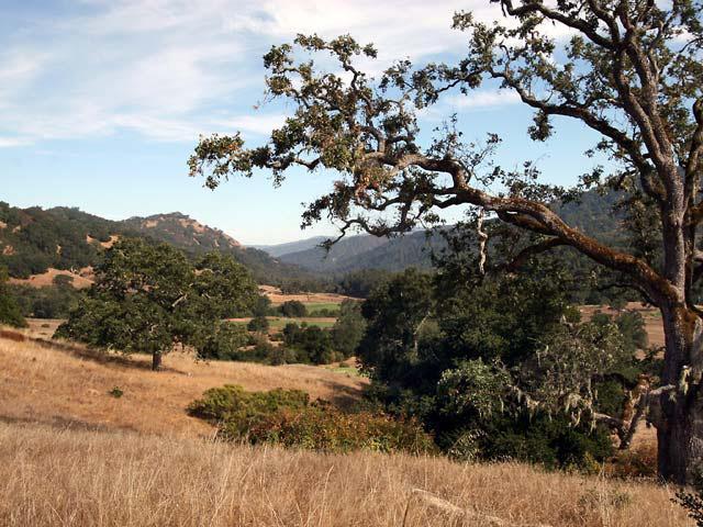 37 Pronghorn Run, Carmel, CA 93923