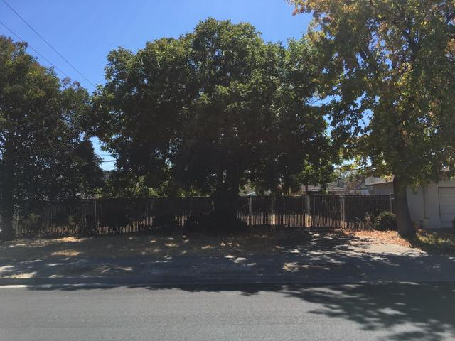 1014 Springfield Dr, Campbell, CA 95008
