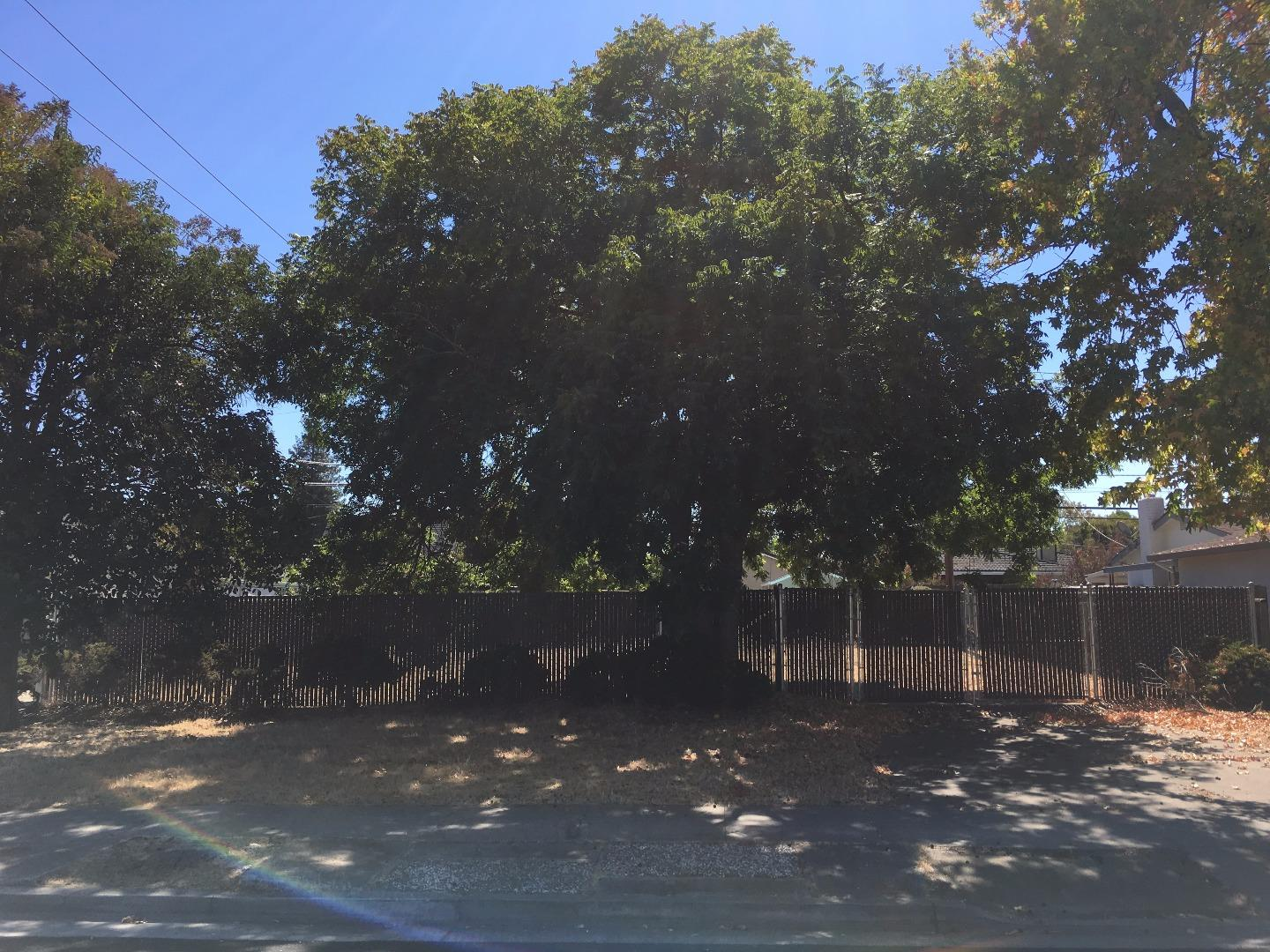 1014 Springfield Drive, Campbell, CA 95008