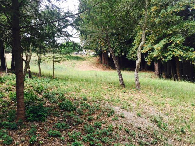 0 Sweetwood Way, Corralitos, CA 95076