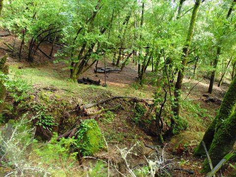 0 Bear Creek Rd, Boulder Creek, CA 95006