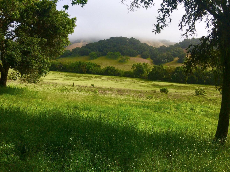 3 Wild Turkey Run, Carmel, CA 93923