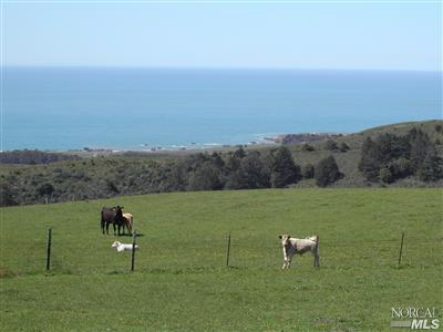 20019 Coleman Valley Road, Bodega Bay, CA 94923