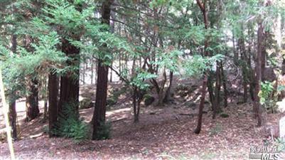 1866 Lupine Way, Willits, CA 95490