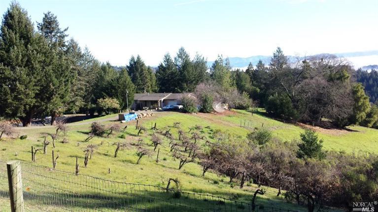 3440 Mount Veeder Rd, Napa, CA