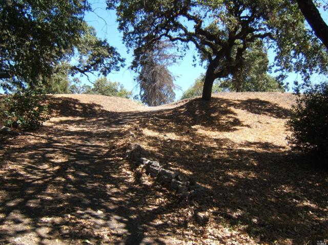 1999 Mount Olive Dr, Santa Rosa, CA