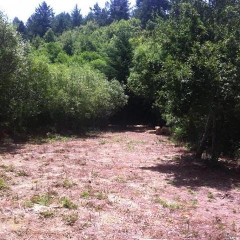 1690 Salmon Creek Rd, Bodega Bay, CA 94923