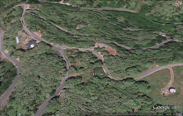 141 Oak Dr, Whitethorn, CA 95589