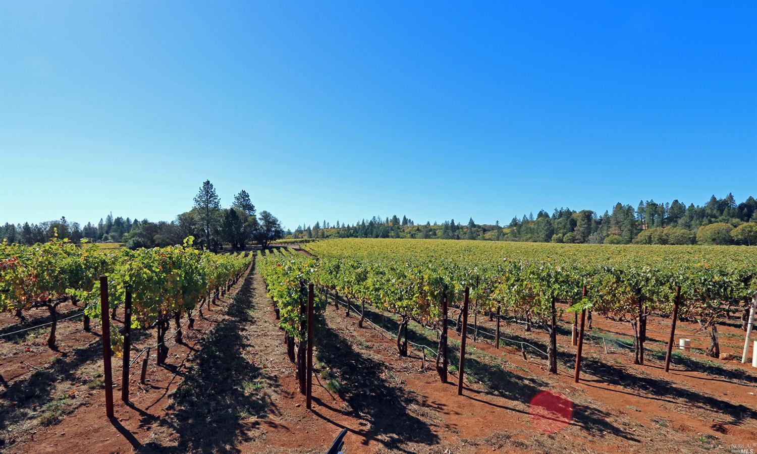 0 White Cottage Road, Angwin, CA 94508