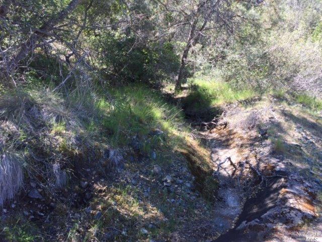 0 Bay Tree Way, Napa, CA 94558