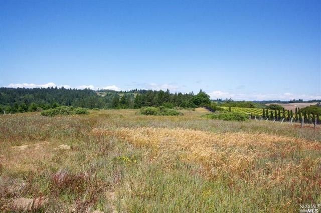 15200 Bodega Hwy, Occidental, CA 95465