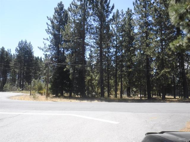 380 Moody Meadow Rd, Lake Almanor, CA 96020