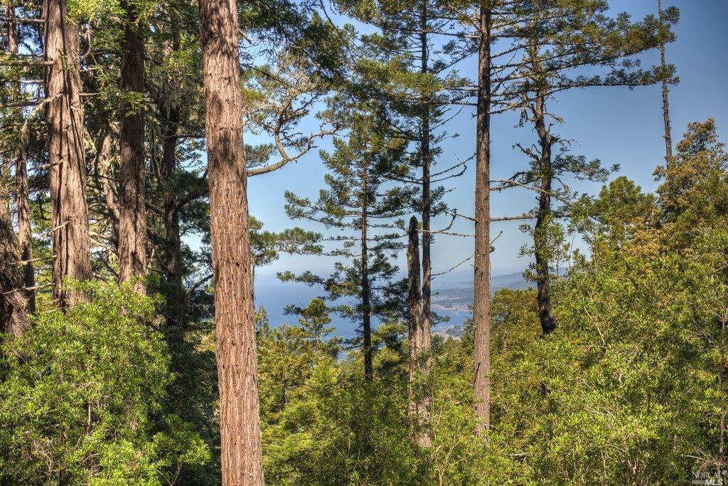 33273 Sea Forest Drive, The Sea Ranch, CA 95497