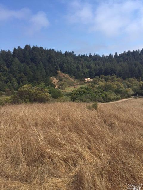 17908 Coleman Valley Rd, Occidental, CA 95465