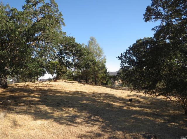 0 Harness Dr, Pope Valley, CA 94567