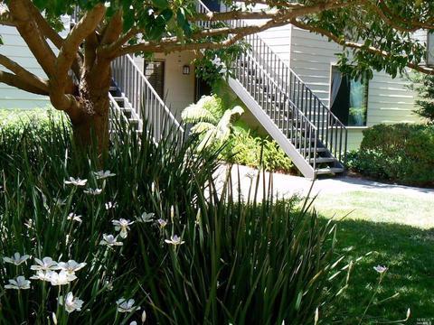 905 Via Casitas, Greenbrae, CA 94904