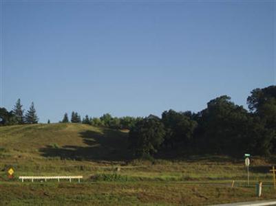 9 Fox Borough Drive, Oakdale, CA 95361