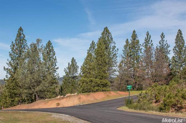 3411 Parleys Canyon Rd, Placerville, CA 95667