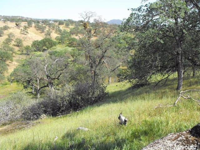 2 Buena Vista Dr, La Grange, CA 95239