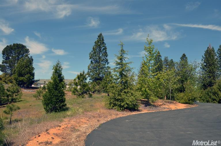 19740 Wedemeyer Place, Colfax, CA 95713