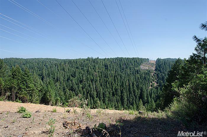 1571 Skyview Dr, Camino, CA