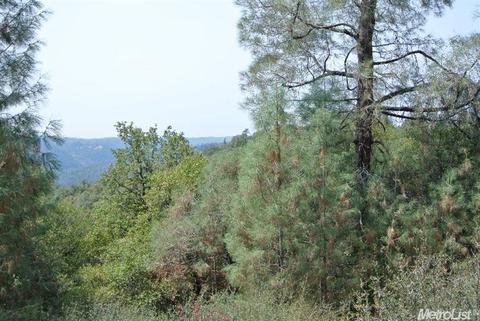 5 Mckeon Ponderosa Way, Foresthill, CA 95631