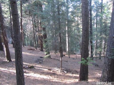 5741 Lupin Ln, Pollock Pines, CA 95726